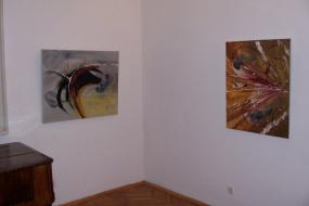 Изложба на Теута Ходжа-Имери (снимка)