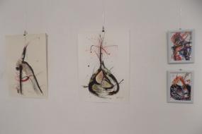 """Изложба """"Живот во бои II"""" на Андријана Мациев (фотографија)"""
