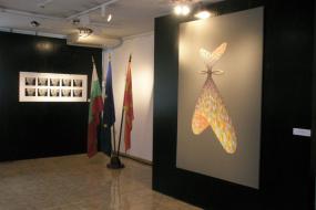 """НУМузеј на современата уметност – Скопје,  проект: изложба """"Синестезија"""" (фотографија)"""