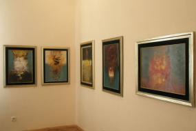 Петар Попчев, проект: Изложба на слики (фотографија)